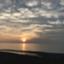 id:cham0_san