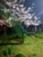 id:chanryo8126