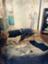 id:chataignerose
