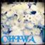 id:chibachiwa