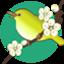 id:chirpspring
