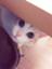 id:chukimix