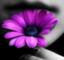 id:critical_angle