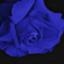 id:cross_io
