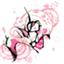 id:crosscaramel-wai