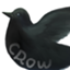 crow31415