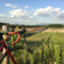 id:cycle_vamos