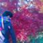 daichi-riflection