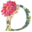 id:daichi703n