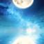 id:daiki0508