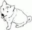 damedog