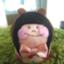 id:dnc_pop30
