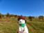 id:donguriboshi