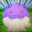 id:dorachan0910252