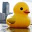 duck678
