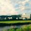 ebi_iv
