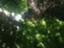 id:emptynames
