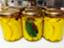 id:eri-tomato-oic2