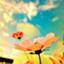 id:etsuko1026