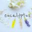 eucalyptushandmade