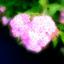 id:exlair
