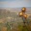 fire_agat