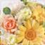 id:fleuret3753