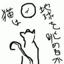 freedomcat