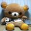 id:fujikodo