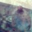 fujita_ao