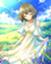 id:fushigidane0011