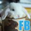 id:futurebase