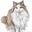 id:goldencat-cherry