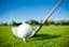 golfdupe