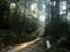 id:gyaosroomformr