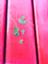 id:haidimama