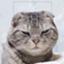 hamaguchi_amago