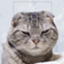 id:hamaguchi_amago