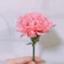 id:hanasayapi