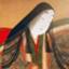 id:haneko5100