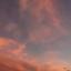 id:hani1004