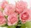 id:happychild_sorriso
