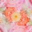 id:happysrose