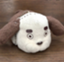 haru_link