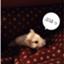 id:haryu0320
