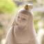id:hayashikunsan