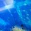id:helloxjump