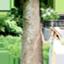 id:hikaruwa
