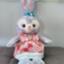 himawari8739