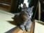 id:hiro4380039